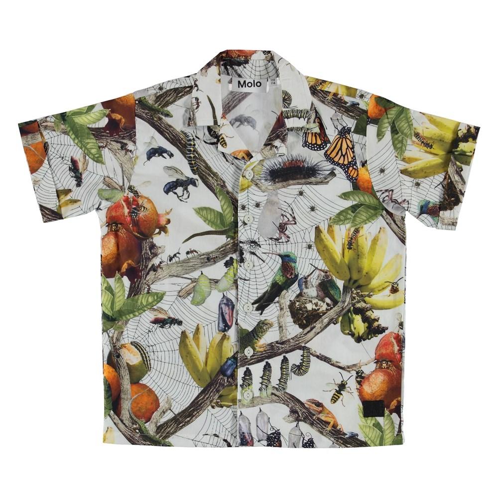Rodi - Living Nature - Shirt