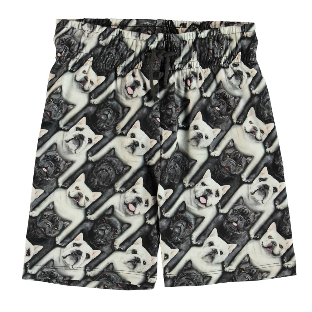 Alim - English Bulldog - Shorts