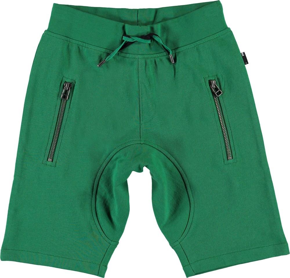 Ashtonshort - Jungle - Green sweat shorts