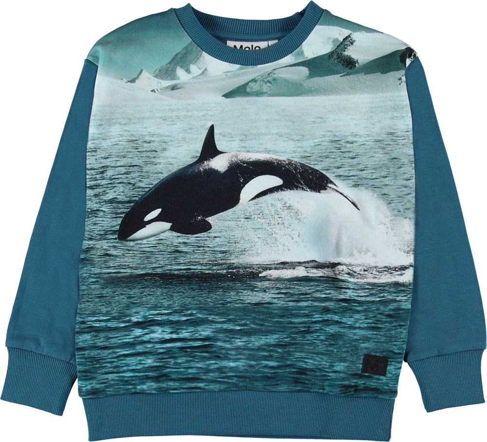 Madsim - Jumping Orca - Blue sweatshirt with orca.