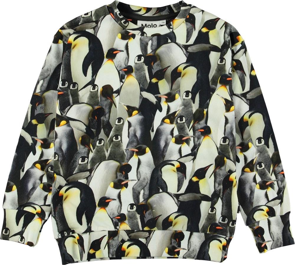 Madsim - Penguins Galore - Sweatshirt with penguins.