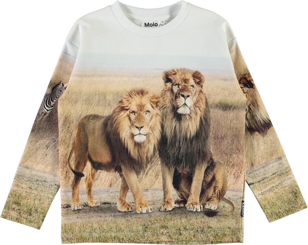 Mountoo - Savanna - Organic sweatshirt with lion print