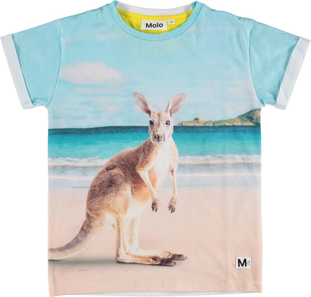 Rafe - Kangaroos - T-shirt with kangaroo print.