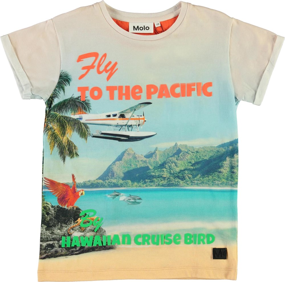 Rafe - Welcome To Hawaii - Organic t-shirt with beach and dolphins