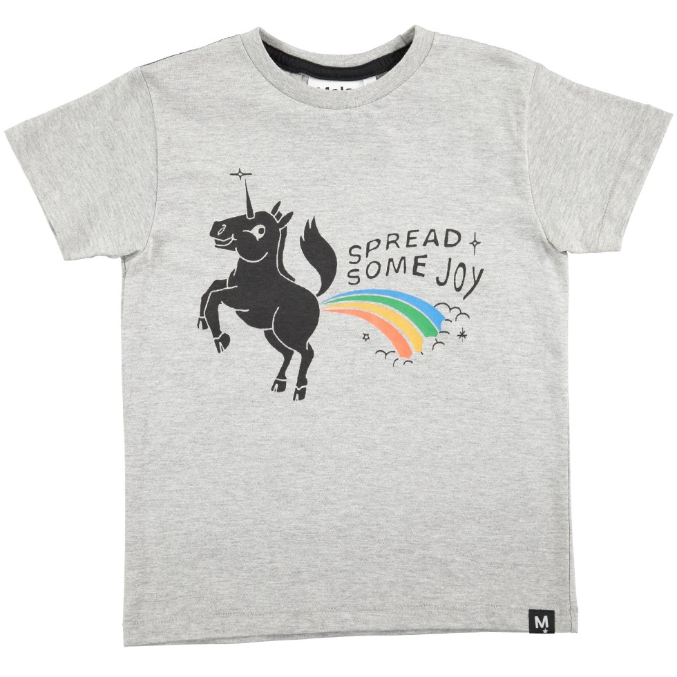 Ragnij - Grey Melange - Short sleeve grey t-shirt with unicorn print