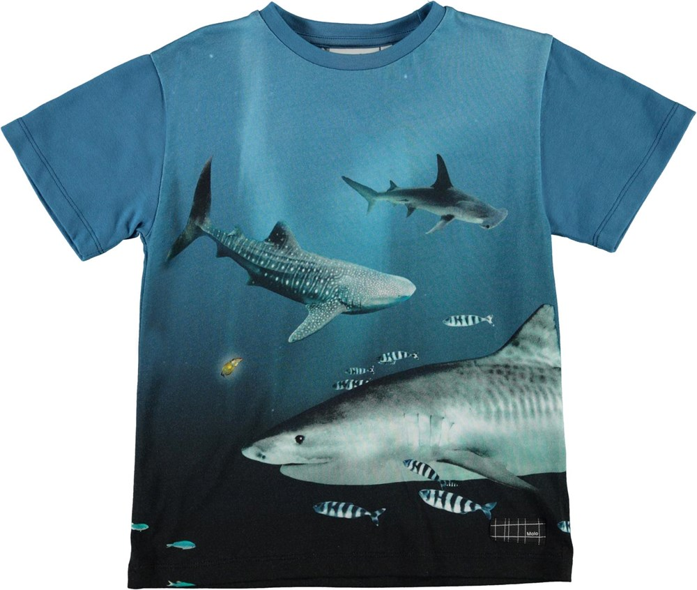 Raveno - Big Fish - Blue organic t-shirt with shark print