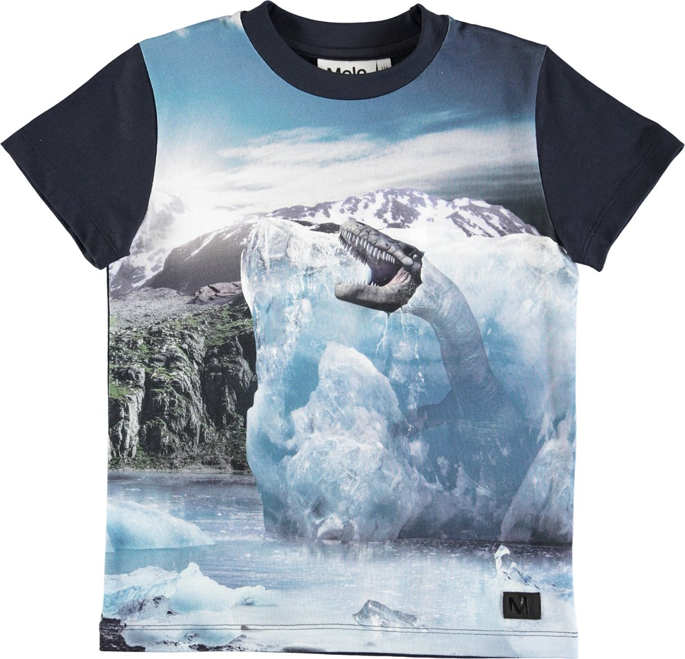 Raymont - Melting Ice - Dark blue t-shirt with landscape and ice print