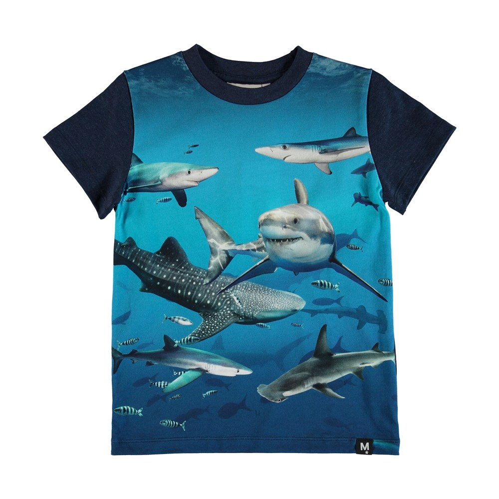 Raymont - Shark Smile - T-Shirt Shark Smile