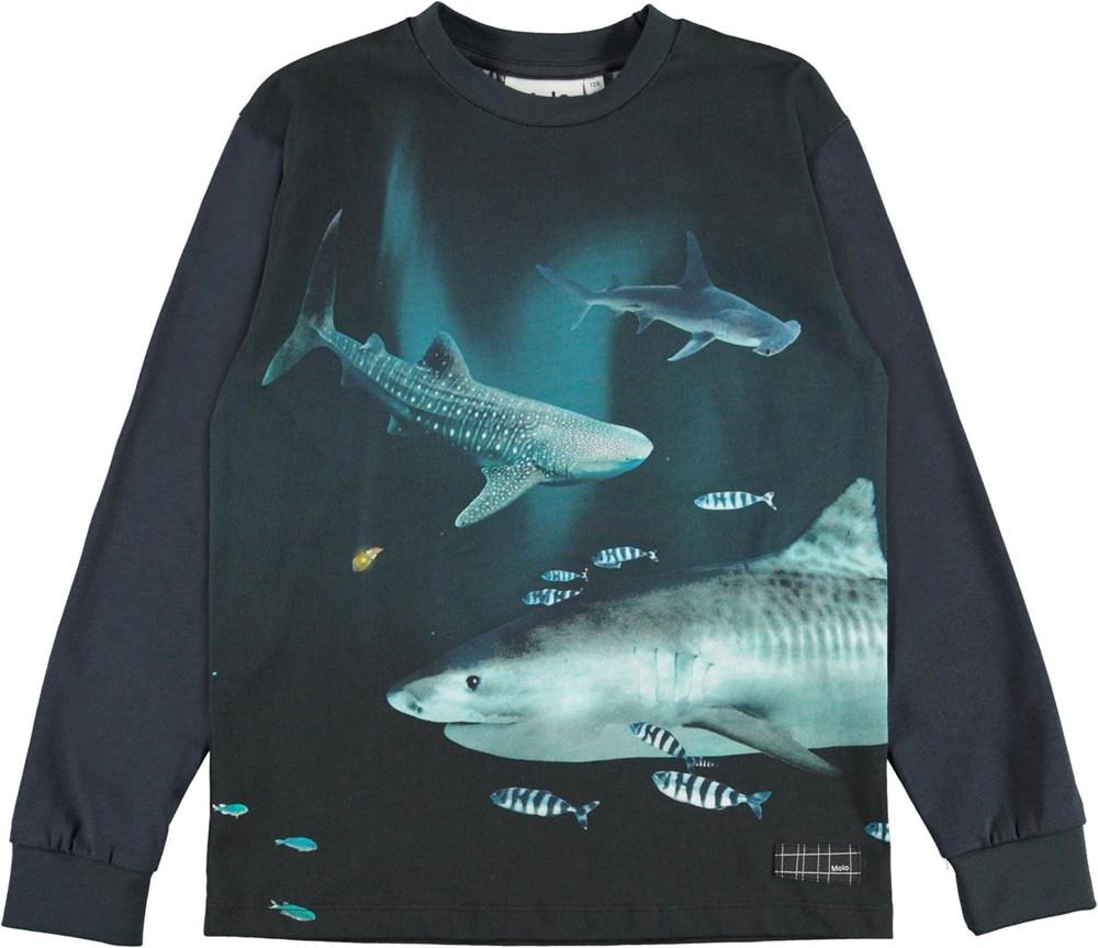 Rexton - Dark Sharks - Blue organic top with shark print