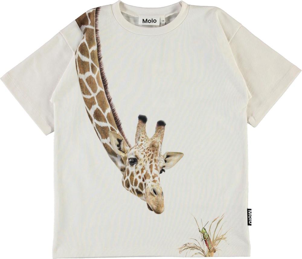 Rillo - White Star - Organic t-shirt with giraffe