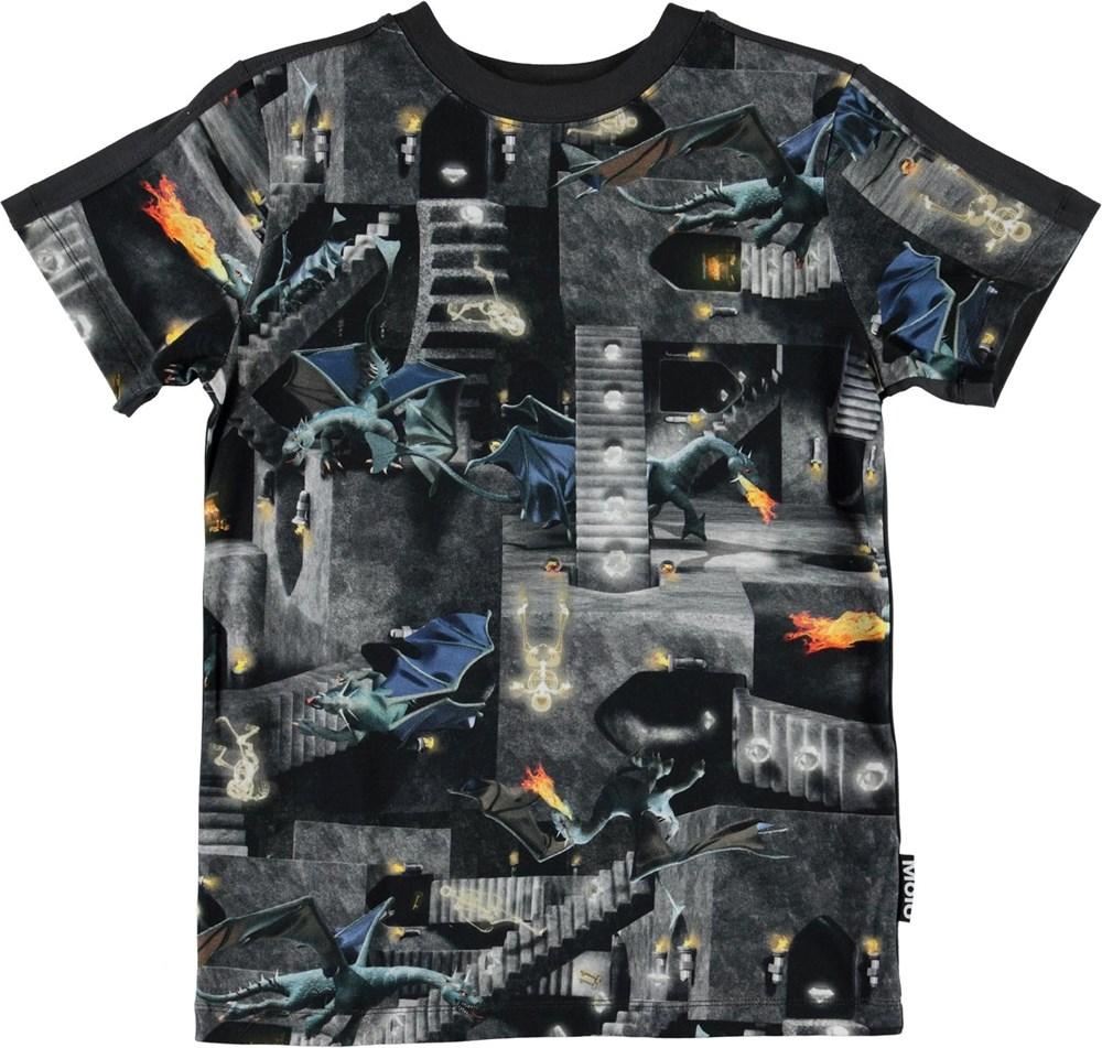 Rishi - Amazing Game - Organic t-shirt with dragons