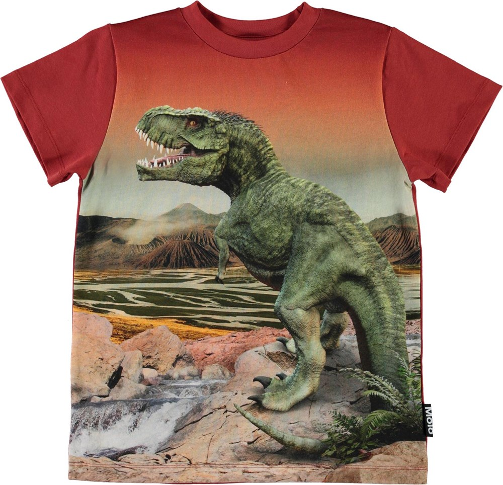 Road - Dinosaurs - Organic t-shirt with t-rex dino