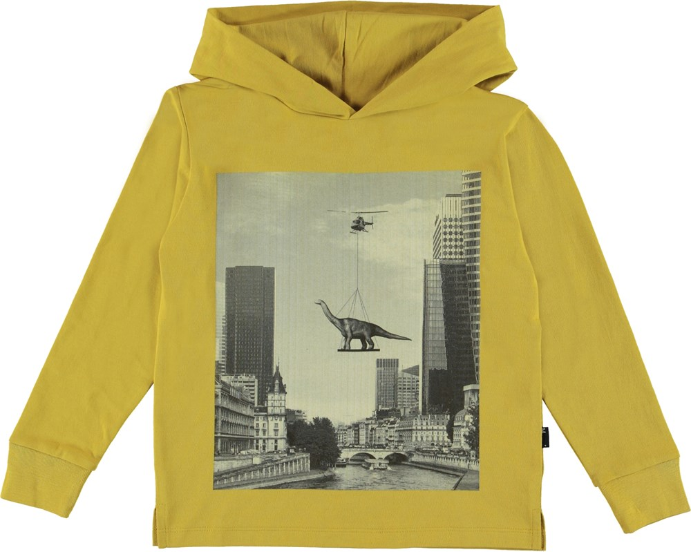 Robert - Flying Dino - Hoodie top with a dinosaur print.