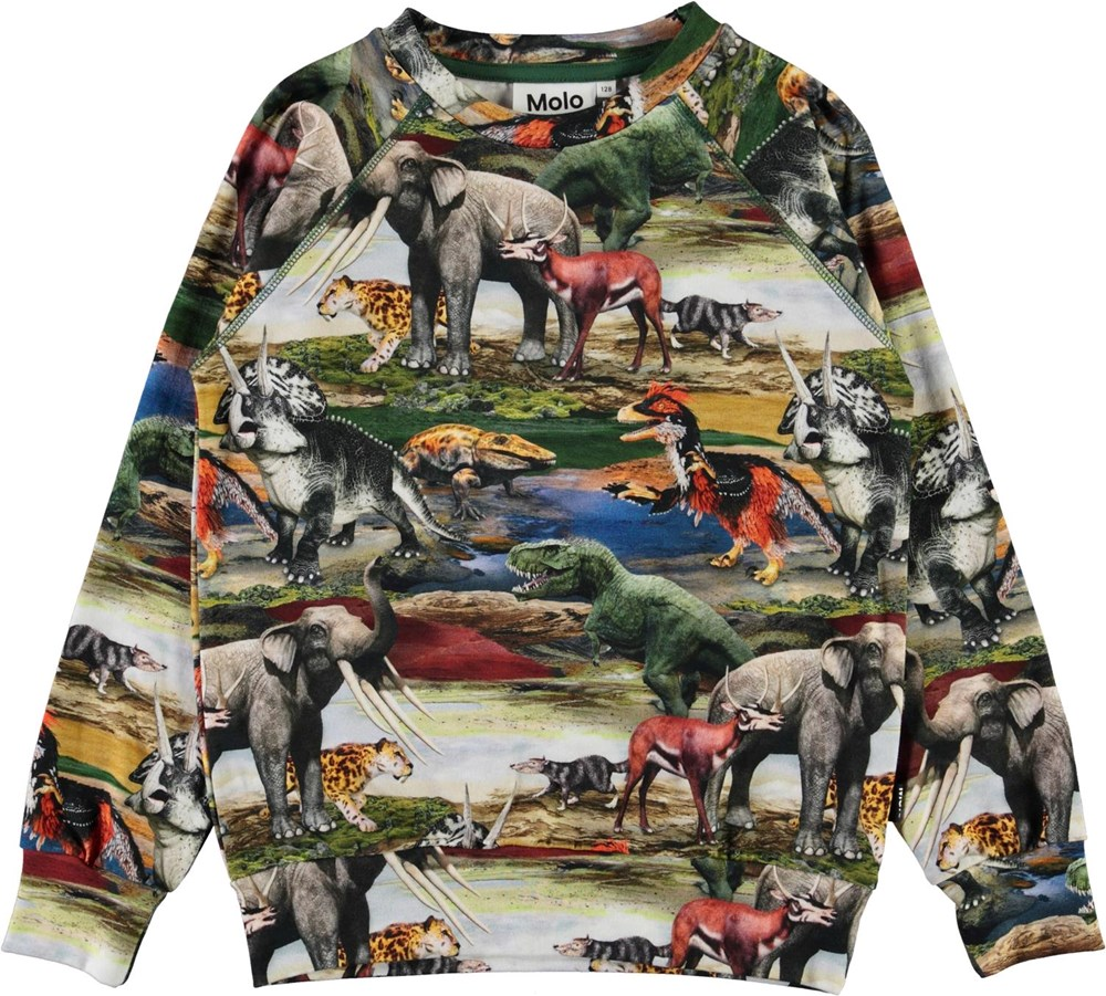 Romeo - Ancient World - Organic top with a print of  dinosaur