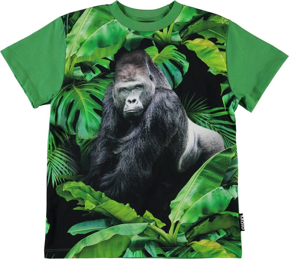 Roxo - Gorilla - Organic green t-shirt with gorilla
