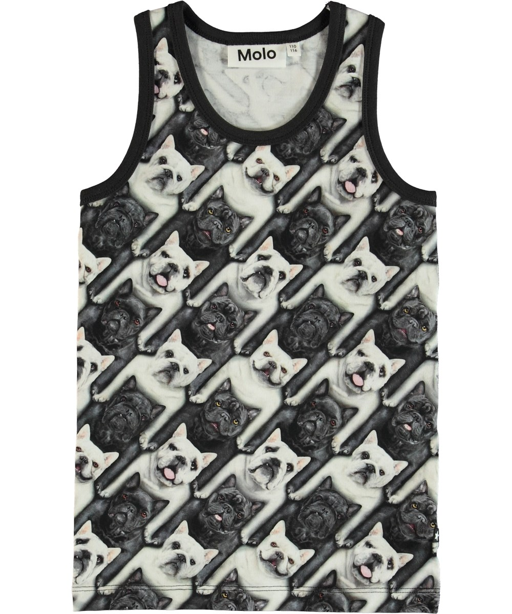 Jim - English Bulldog - Vest