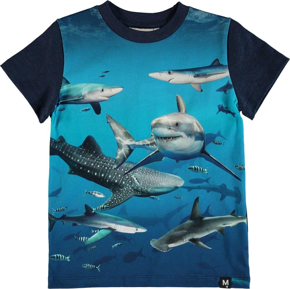 Raymont - Shark Smile - T-Shirt Shark Smile