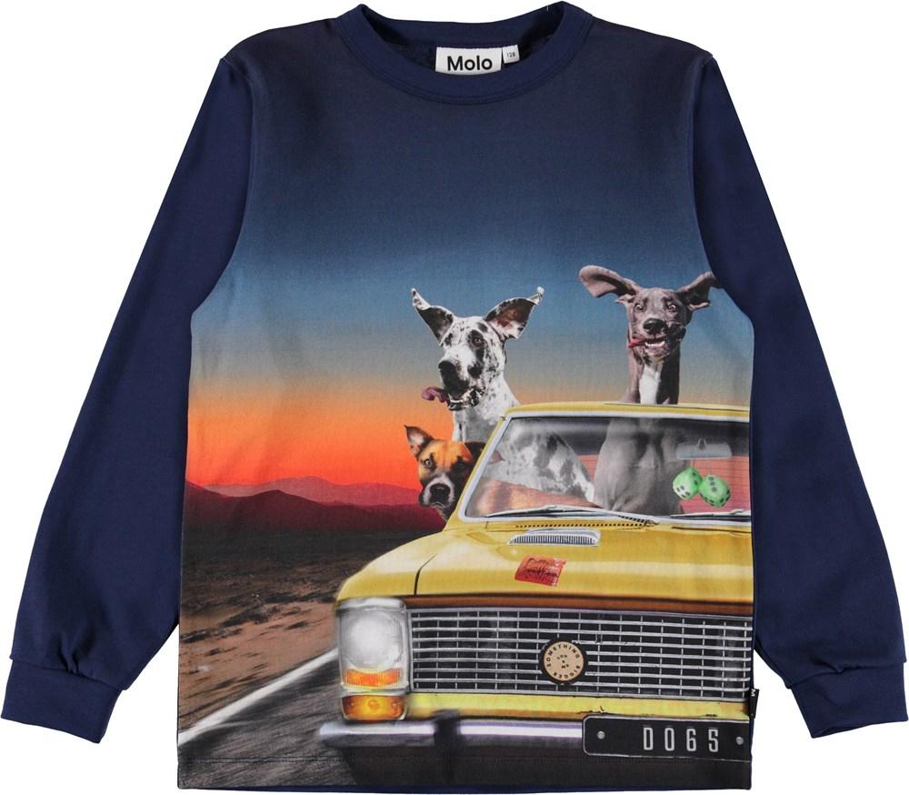 Rez - Canine Cruising - Blå bluse med print af hunde