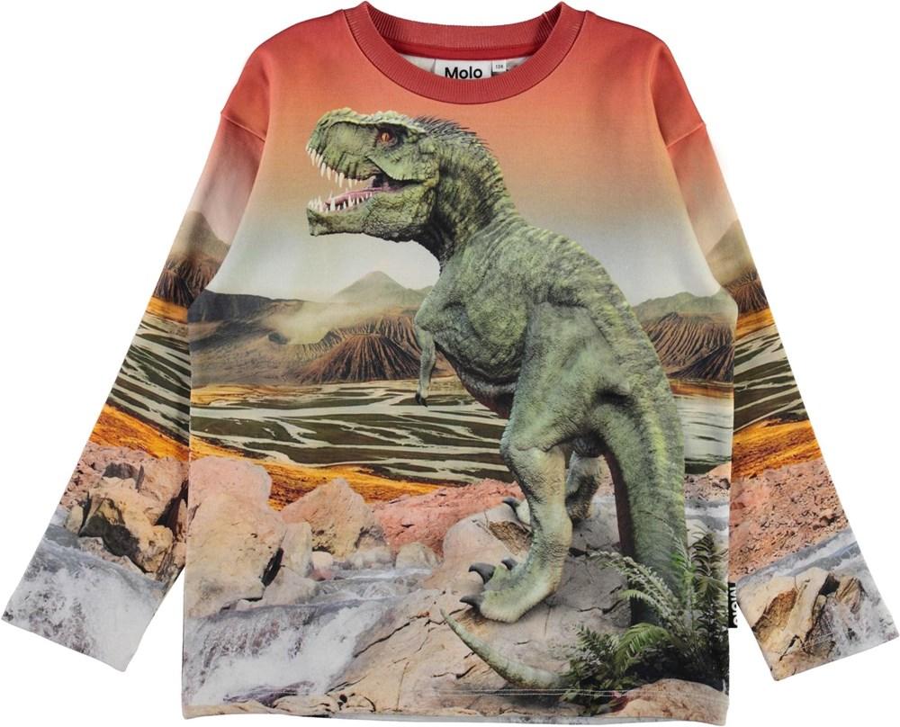 Mountoo - Dino Landscape - Økologisk sweatshirt med T-rex dino print