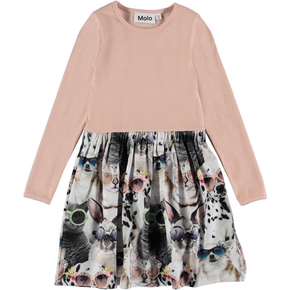 Credence - Sunny Funny - Tvådelad klänning med djur tryckt kjol.
