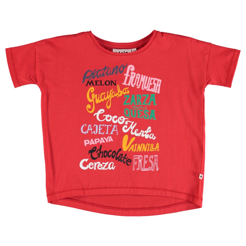 Raeesa - Icecream Flavors - T-Shirt