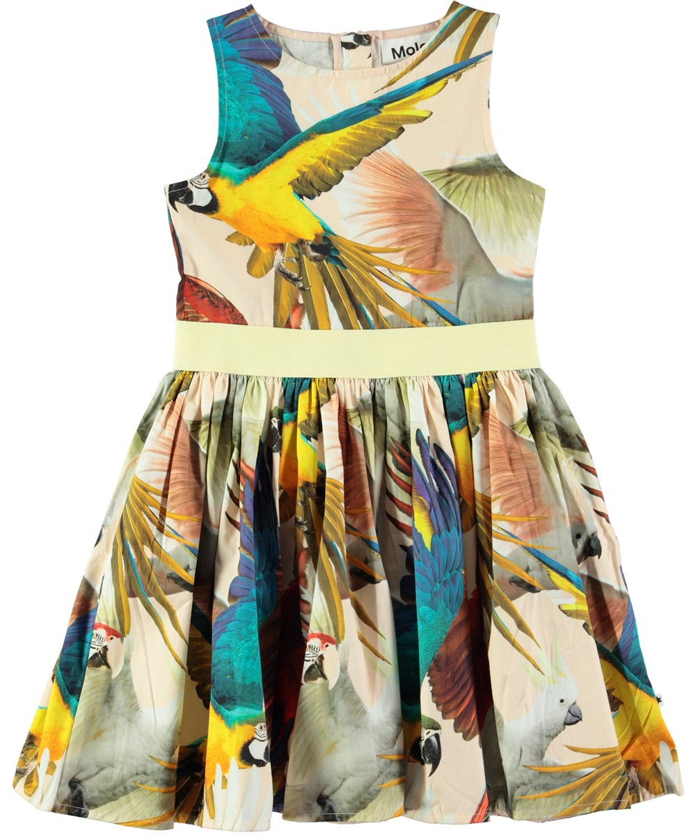 99dd7103b5b5 Carli - Parrots - Lovely dress with digital parrot print - Molo