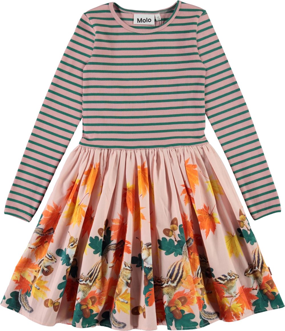 Casie - Chipmunks - Organic dress with striped top and squirrel