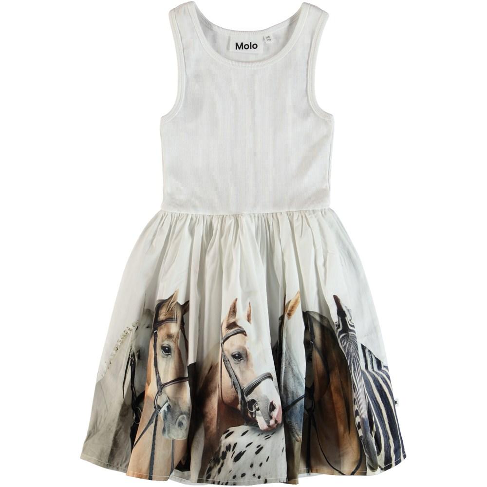Cassandra - Horse Stripe - Dress