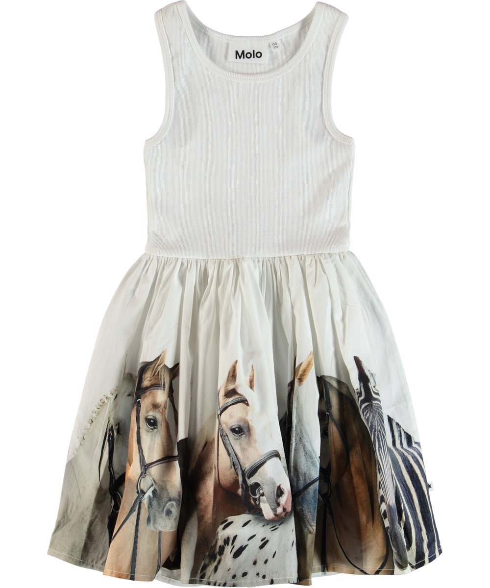 Cassandra - Horse Stripe - Dress