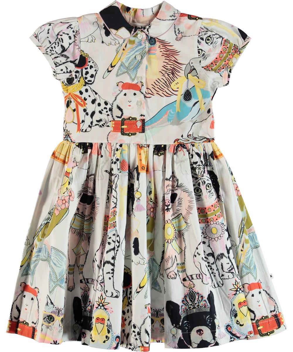 Cybil - Dressy Pets - Dress