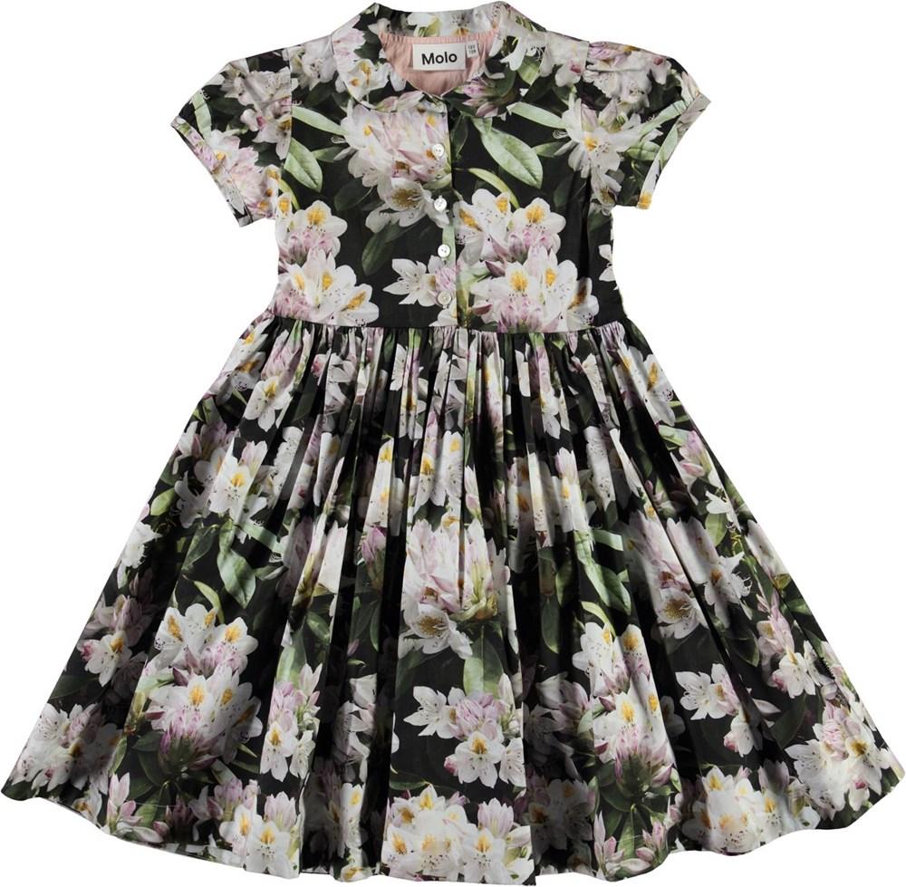 Cybil - Pretty Puppy AOP - Floral organic shirt dress