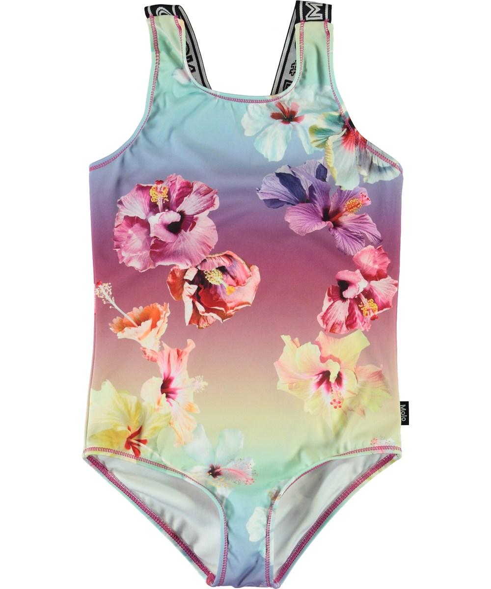 Orchid - Hibiscus Rainbow -