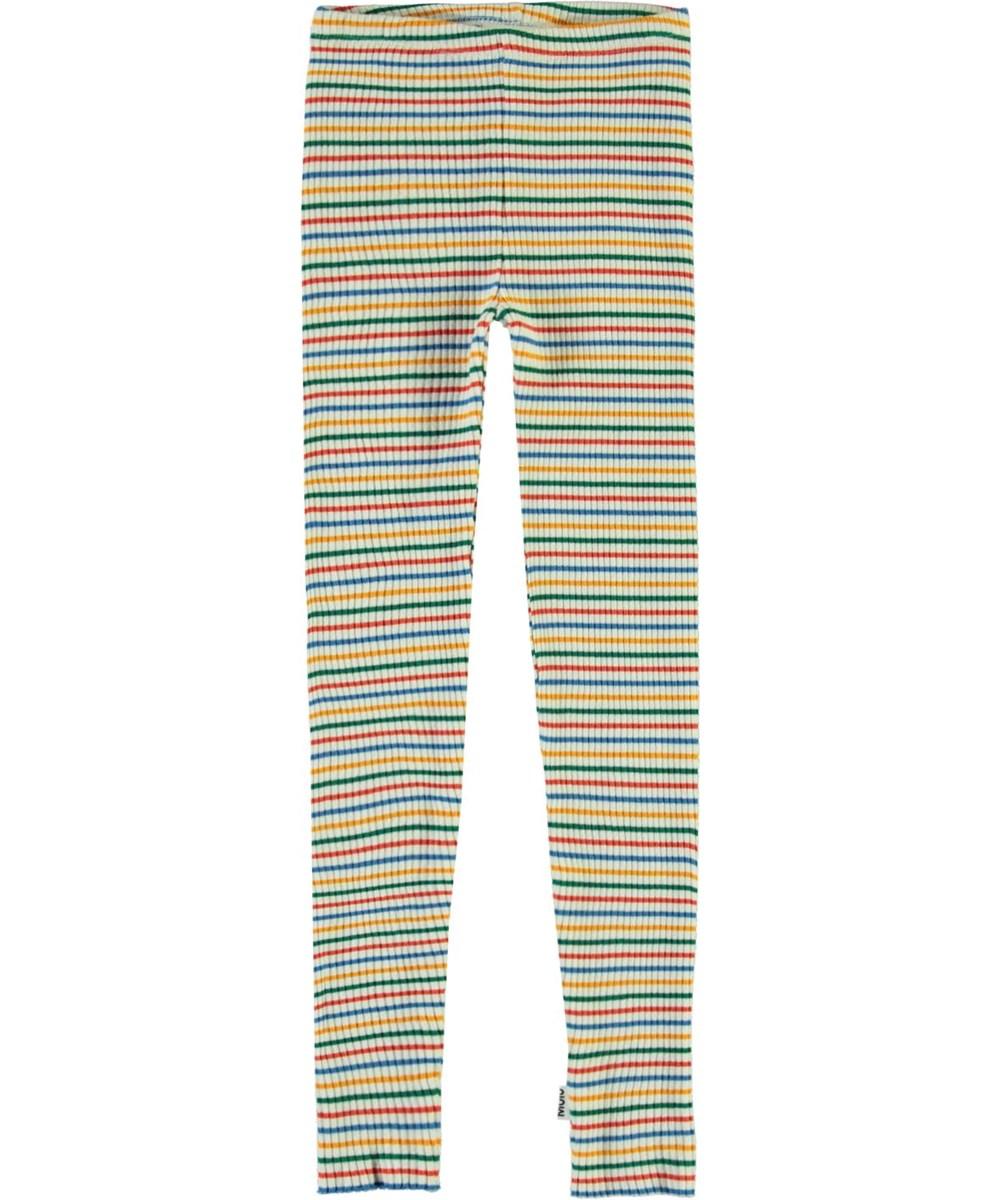 Nikita - Fine Rainbow Stripe - Striped rib leggings