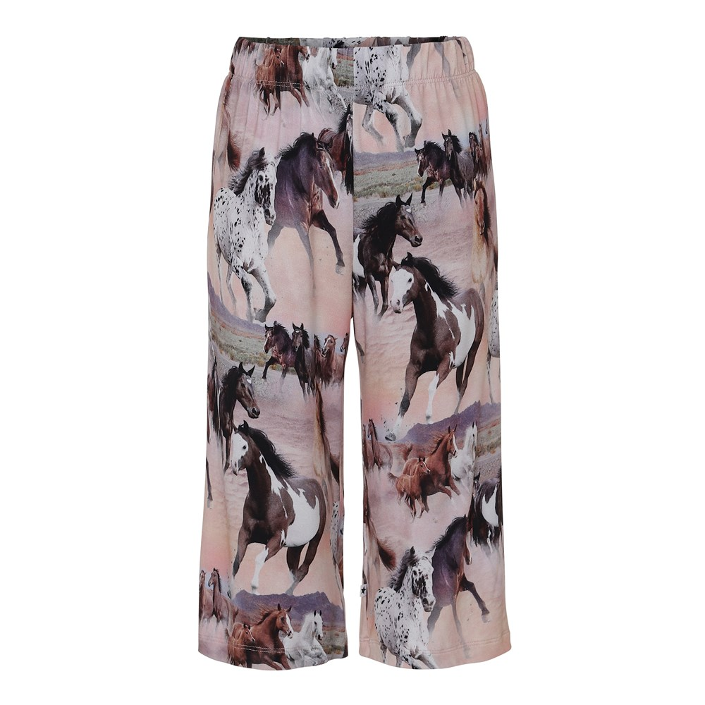 Ajais - Wild Horses - Bukser
