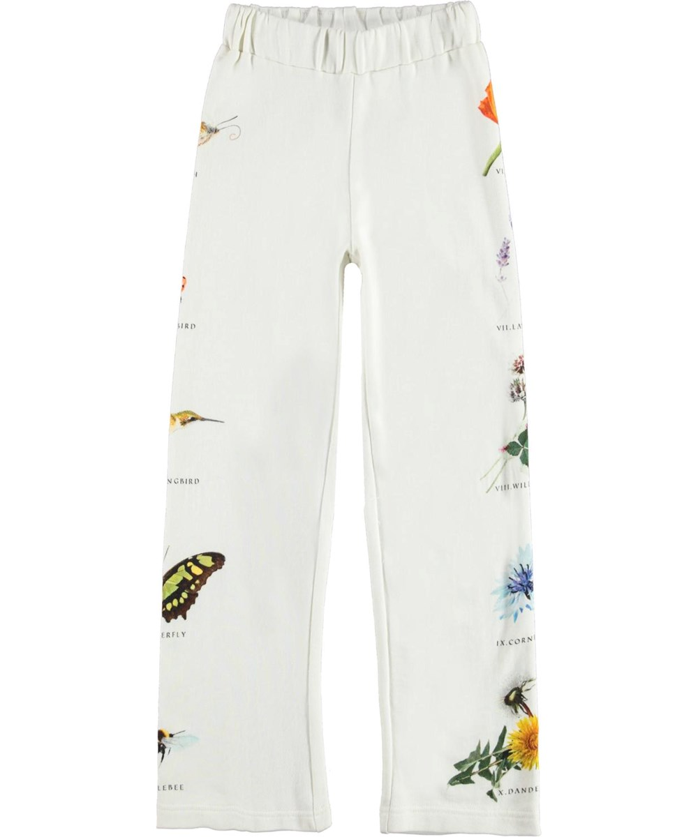 Aurita - Pollen Text - Sweatpants with insects and flowers