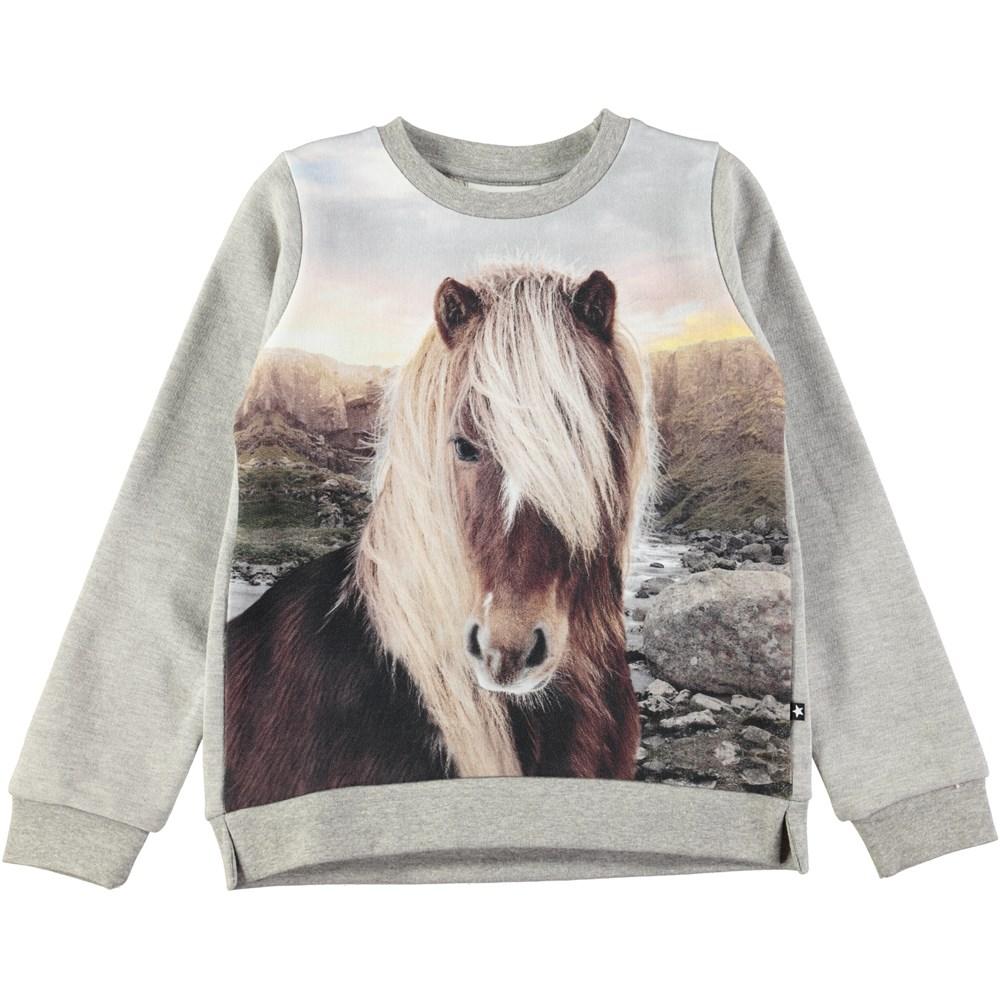 Marlee - Icelandic Horse - Grey sweatshirt with digital Icelandic horse print