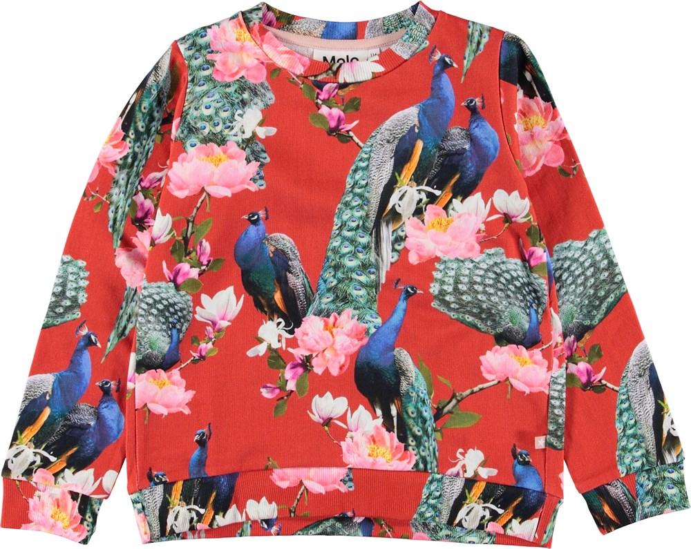 Marlee - Red Peacock - Red sweatshirt with peacocks.