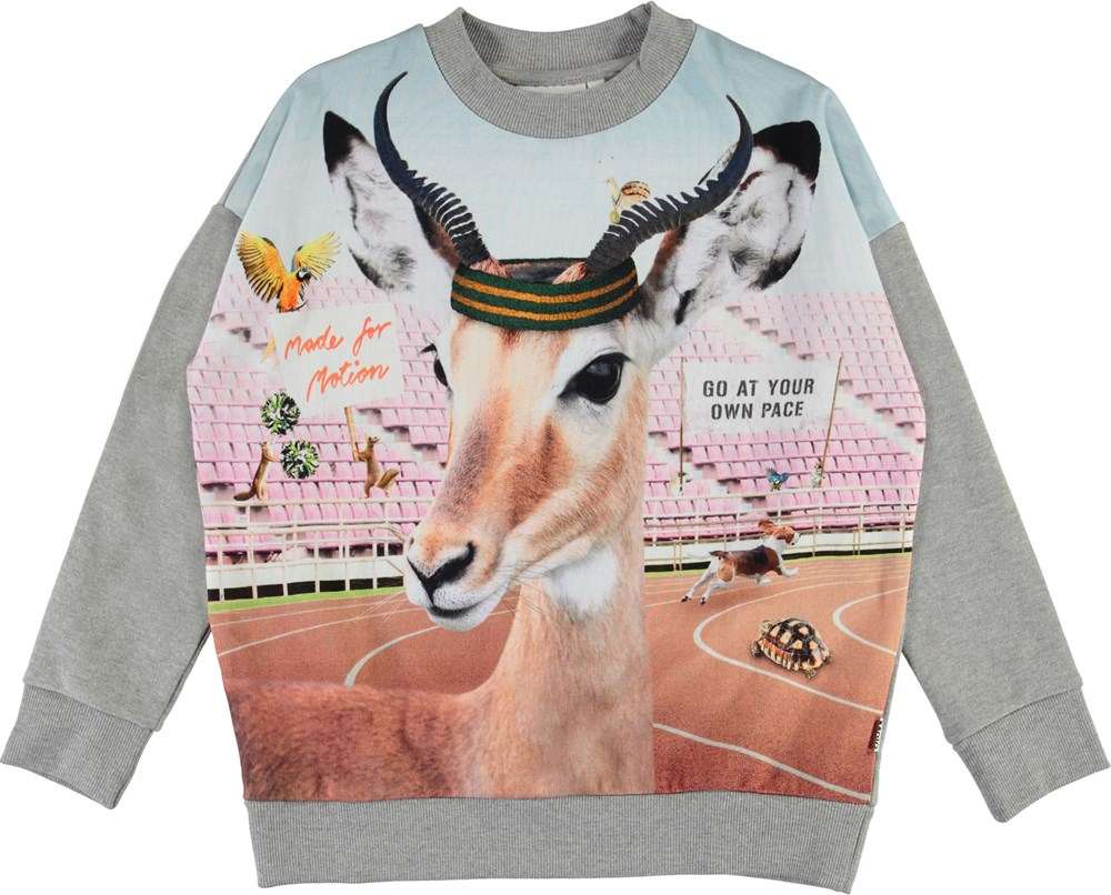 Maxi - Your Own Pace - Organic sweatshirt with sports animals