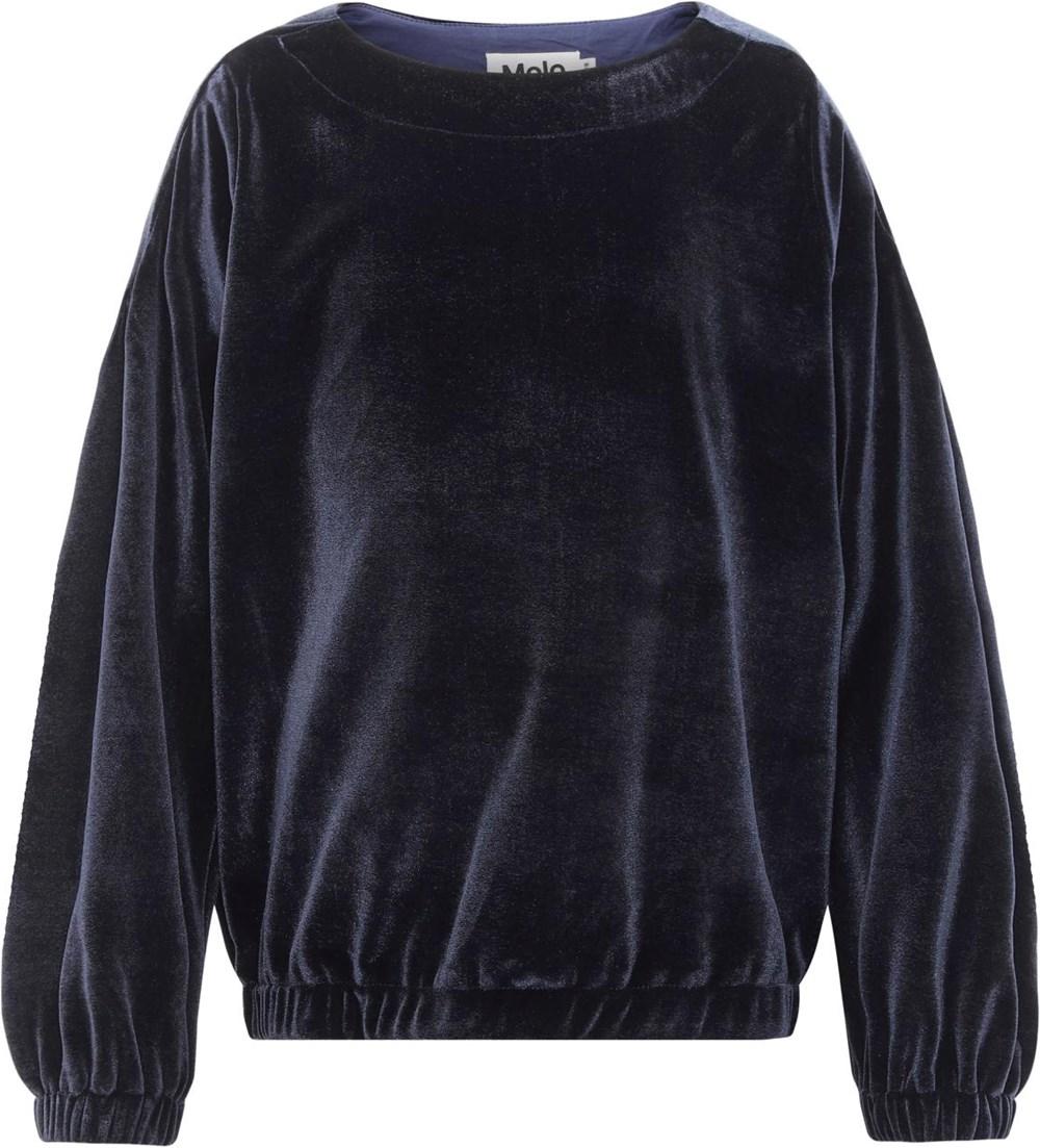 Molly - Peacoatforest Dinos - Blue velour sweatshirt