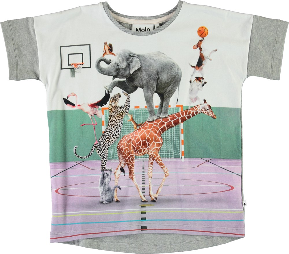 Raeesa - Animal Pyramid - Grey organic t-shirt with animals