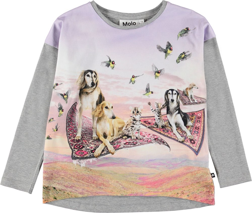 Renate - Flying Carpet Dogs - Grey top with flying carpets.