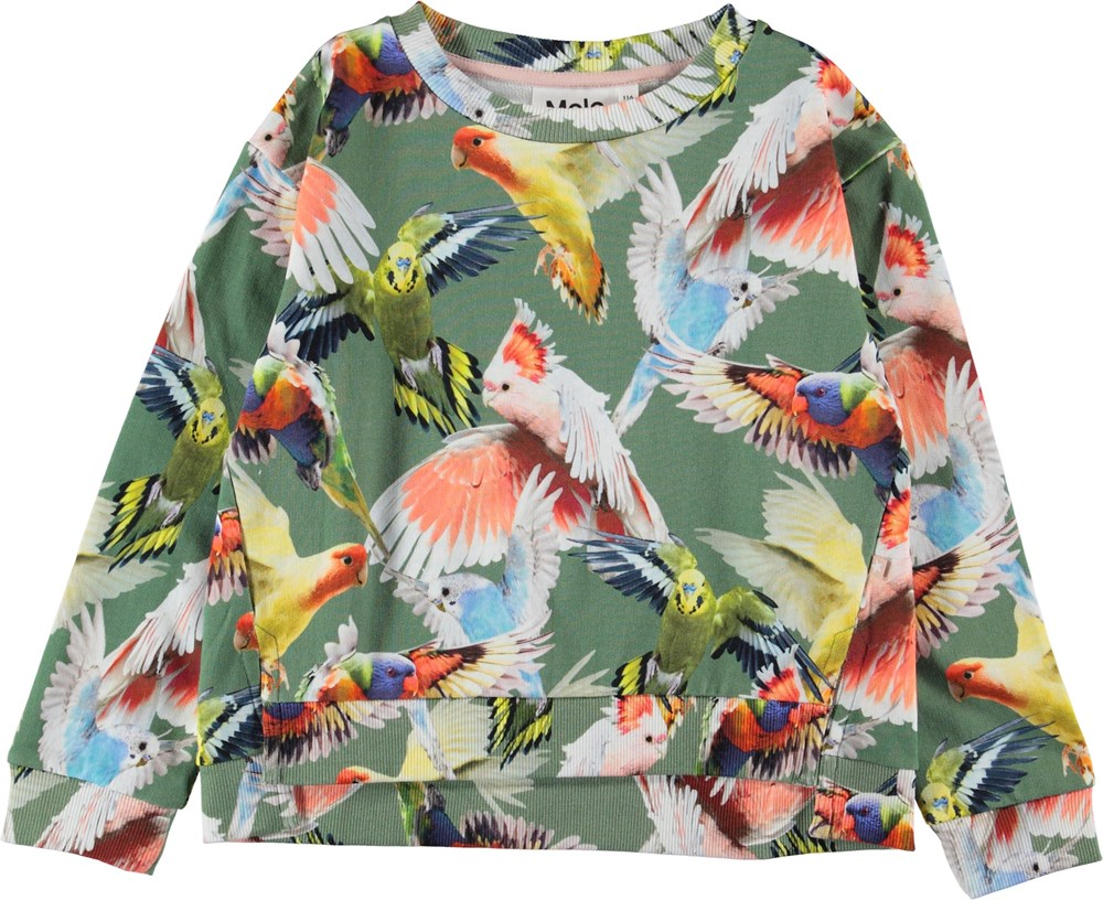 Malissa - Budgies - Green sweatshirt with birds.