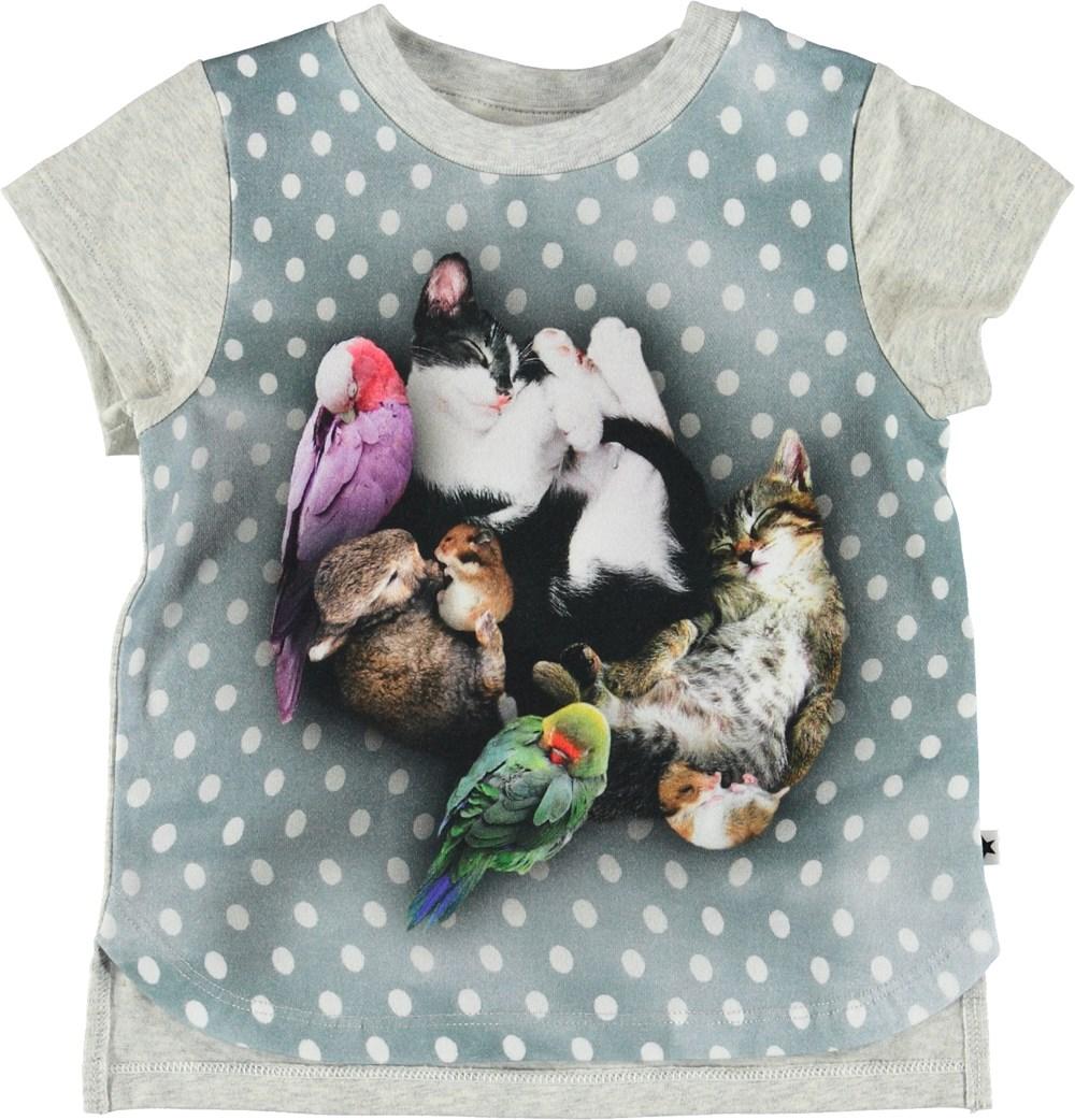 Erin - Sleepy Pets - Baby t-shirt med dyr og prikker.