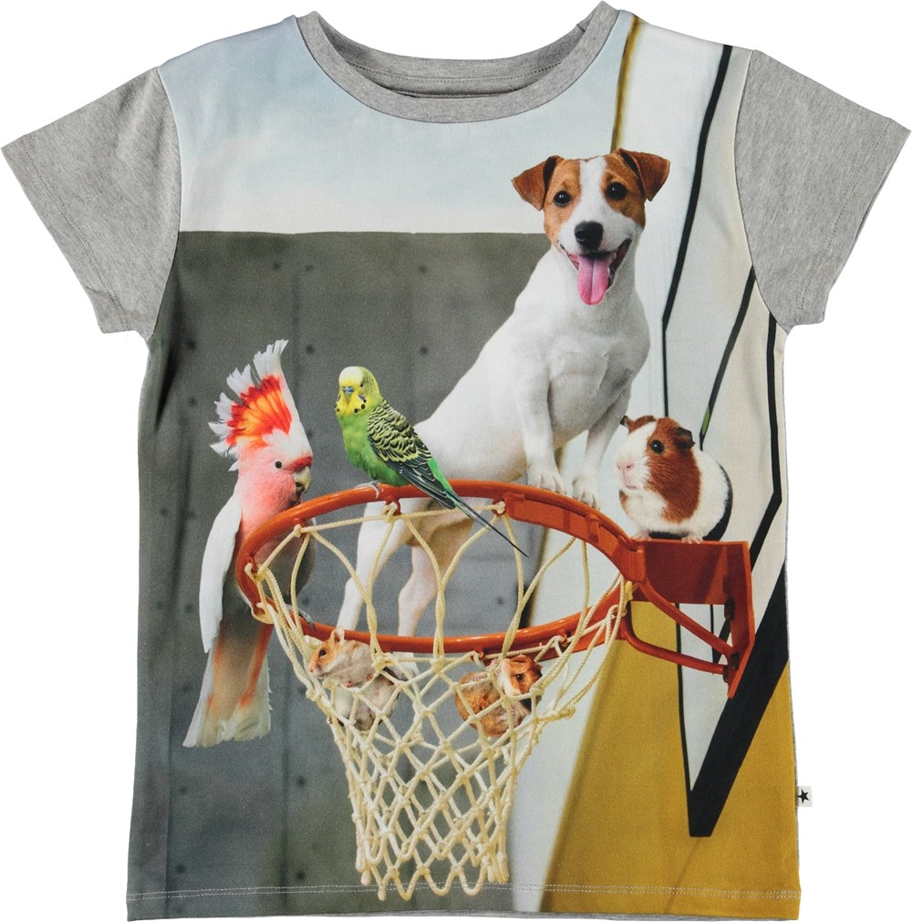 Ranva - Pet Escape - T-shirt with basketball hoop and animals.