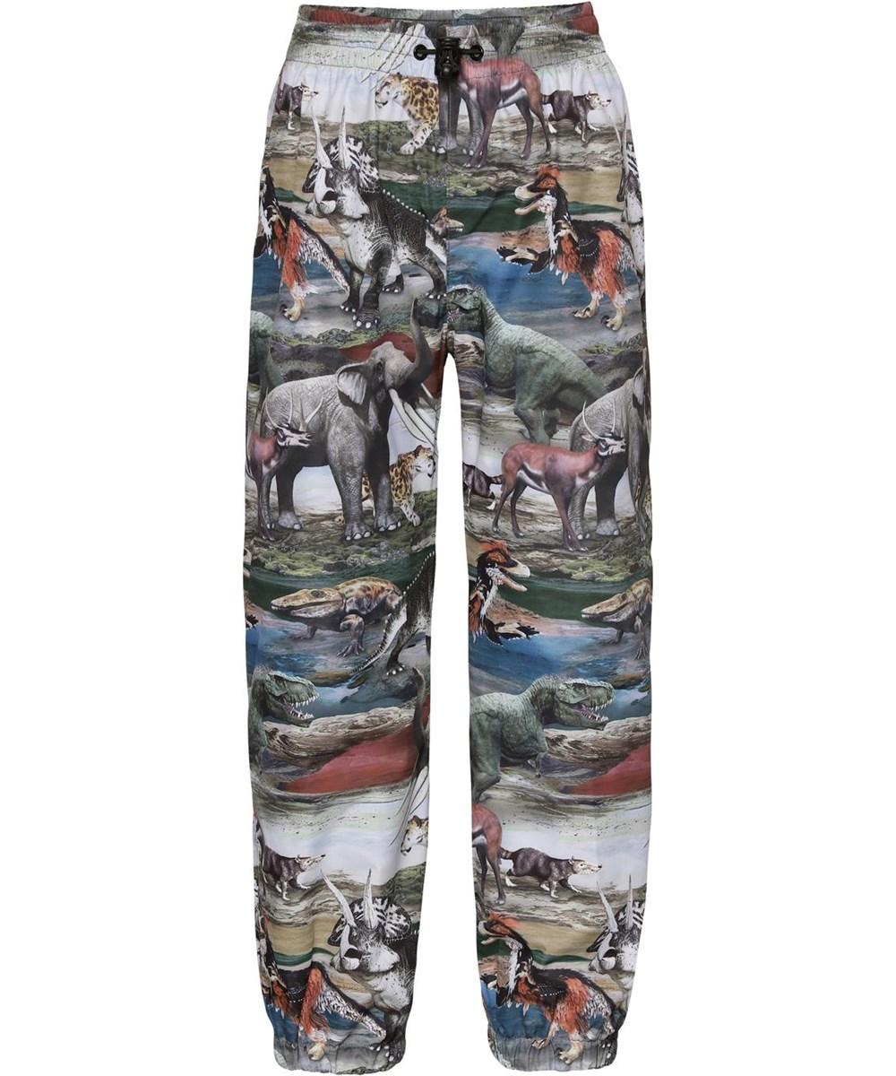 Waits - Ancient Animals - Rain trousers with dinosaur print