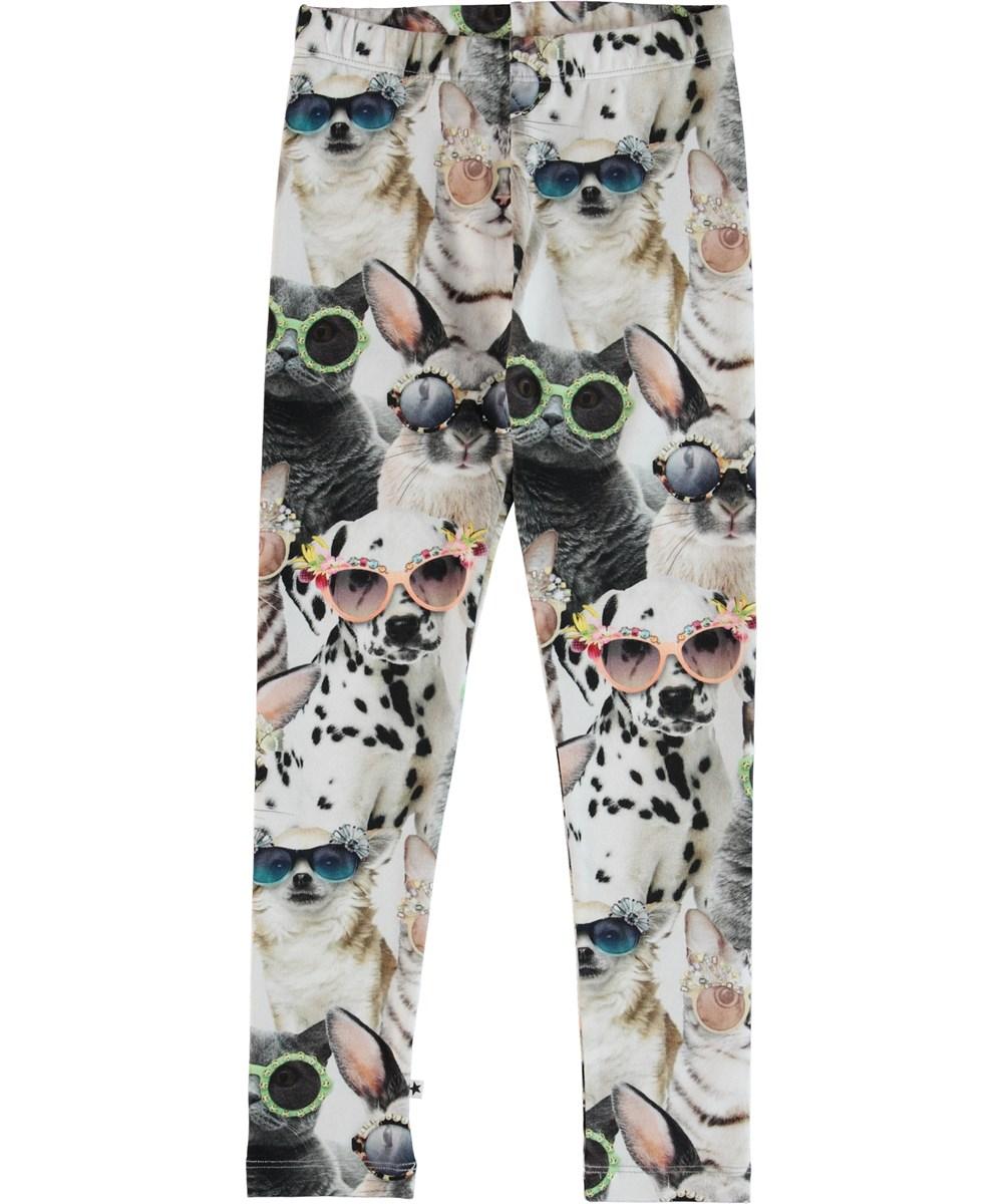 Niki - Sunny Funny - Leggins med print af dyr.