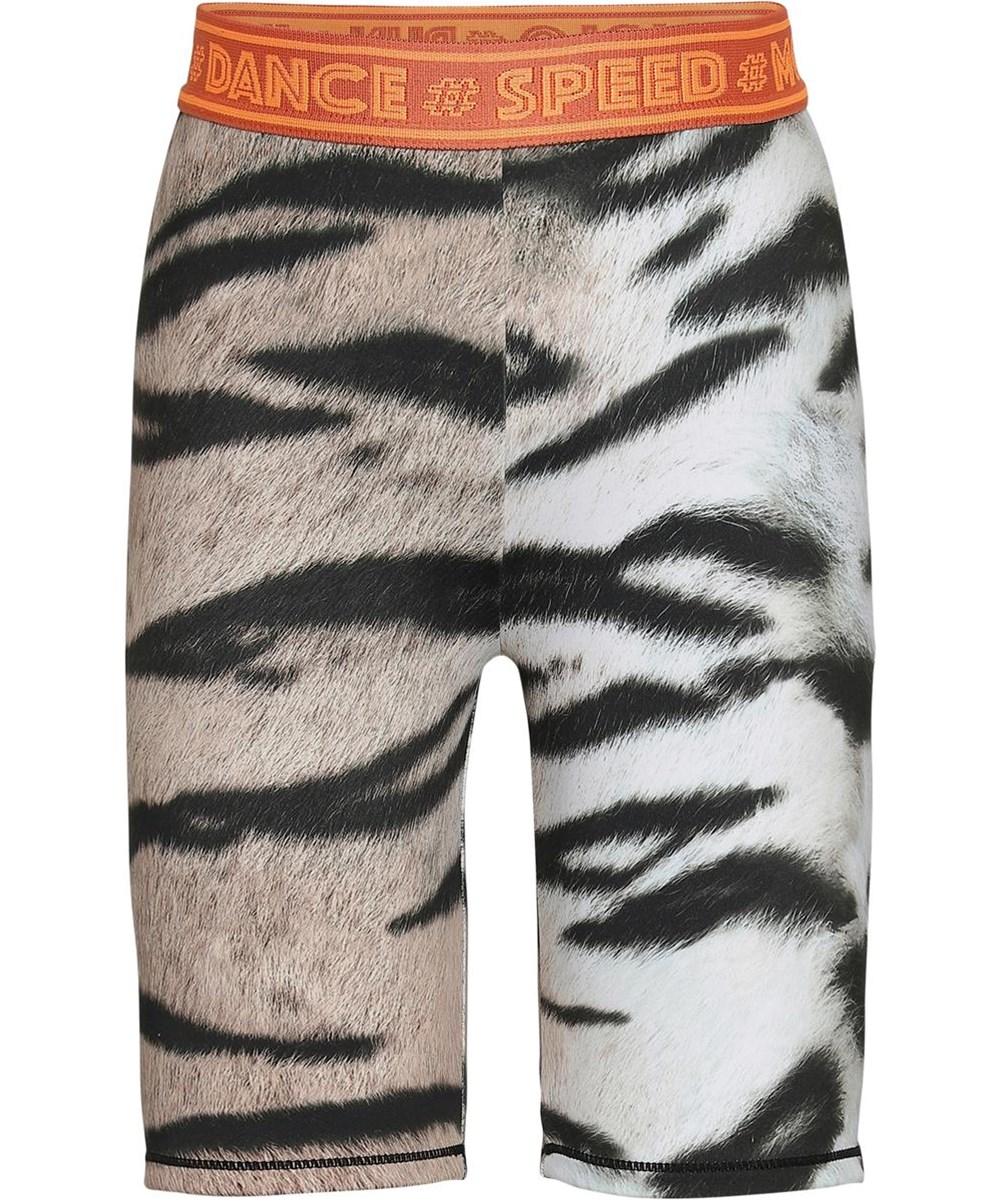 Obelia - Wild Tiger - Tiger sports cykel shorts