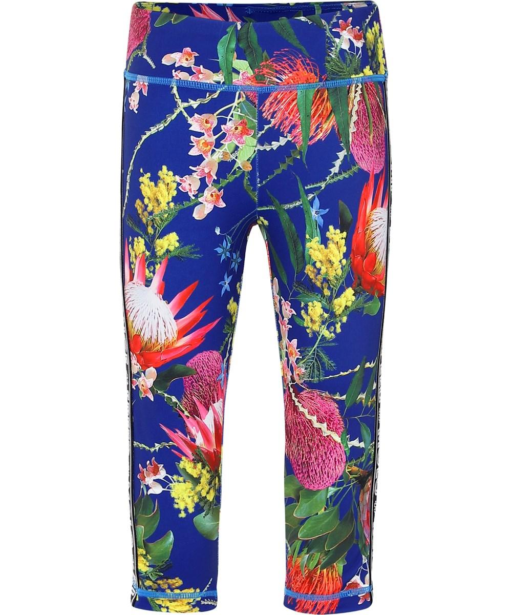 Orlaith - Wild Flowers - Blå blomstrede korte sports leggings