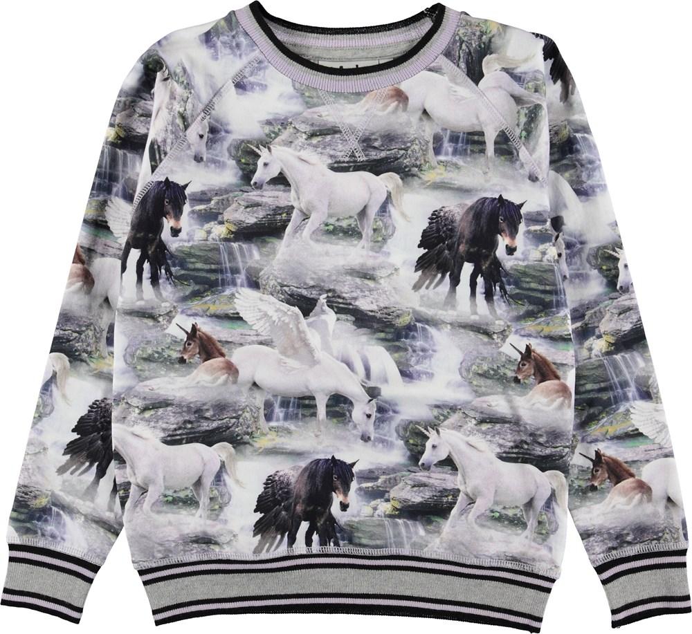 Raewyn - Mythical Creatures - Sweatshirt med enhjørninge.