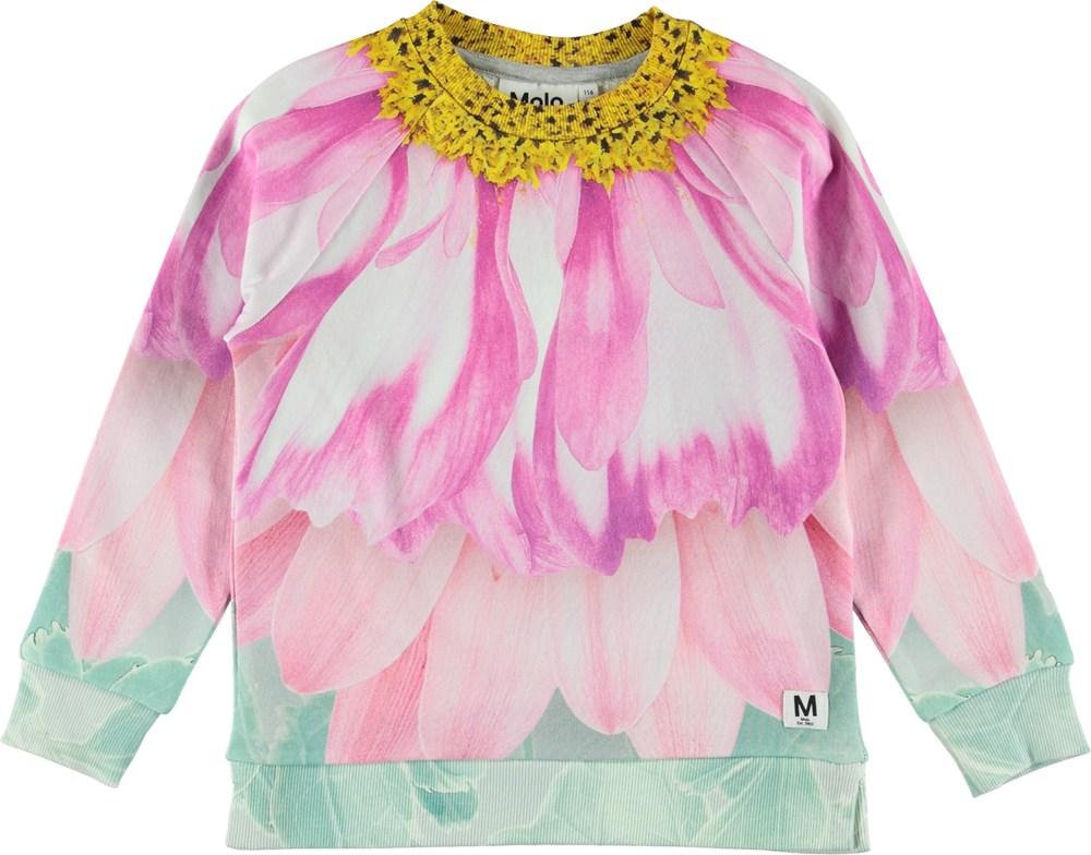 Marina - Petal Fairy - Sweater - Petal Fairy